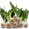 Spring Onions Bunch